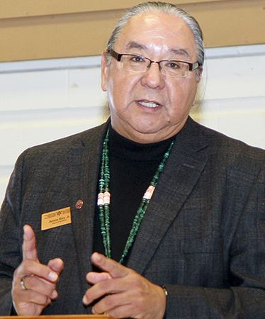 FIRST NATIONS VOTING