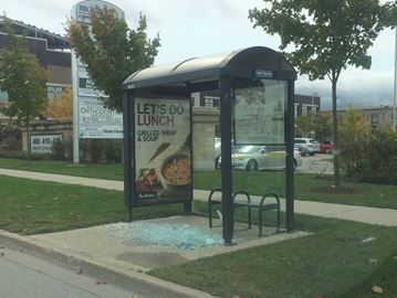 Several bus shelters damaged across Milton
