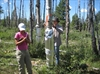Drought affects forests for years: study-Image1