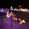 Fantasy of Lights in Elgin Park