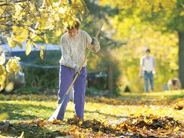 Midland contemplates $100 fine for not bagging leaves, brush