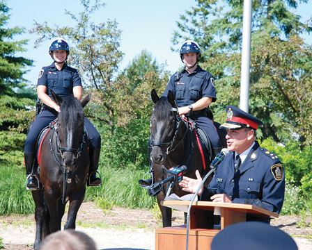 Policehorses Gallery Police Pony Patrol Meets Waterloo Therecord