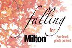 Falling for Milton