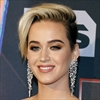 Katy Perry urges support for veteran charity-Image1