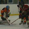 Havelock Hawks edged by Wild