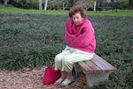 Missing senior with Alzheimer's