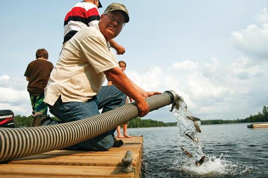 whitestone lake fishing map Reviving Fishing Activity In Whitestone Muskokaregion Com whitestone lake fishing map