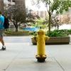 Fire hydrants making big bucks