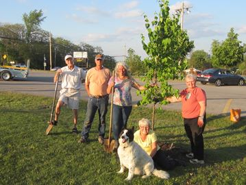 The tree-planting crew in Ennismore