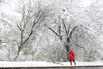 Cold temps cause more deaths than heat-Image1