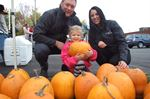 Pumpkin giveaway supports Orillia business's charitable cause