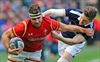Scotland sinks Wales 29-13 in Six Nations-Image1
