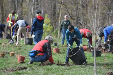 Tree planting for Earth Day
