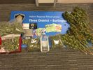 Drugs seized by Halton police