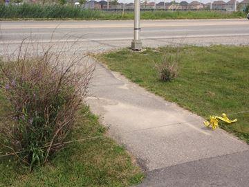 Low-hanging cable is a public trip hazard: Burlington resident