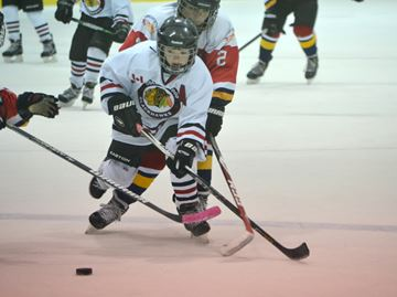 Hometown hawks win two titles at Collingwood Silver Stick
