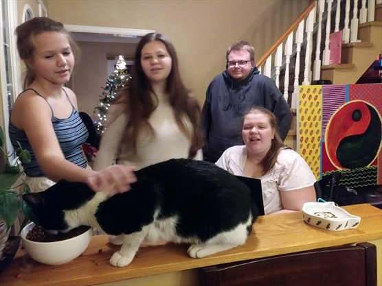 Missing Newmarket service cat finds way home, reunited with family