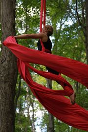 Members of the Vertical Belles from Aerial Silks Collingwood performed in the tree tops at Metcalfe Rock during the Climbing Festival. Tony Hoffmann Photo.