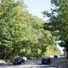 McLaughlin Road widening up for debate