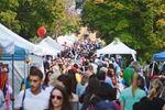 Popular Thornhill festival