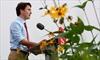 Harper, Trudeau clash on budgets, deficits-Image1