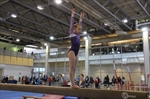 Muskoka Classic Gymnastics, Brac