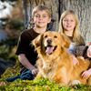 Diagnostic imaging for your pet