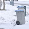 Garbage cans in winter