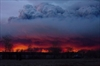 McMurray fire costs reach almost $8.9B: study-Image1