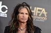 Steven Tyler headlines Rolling Stone party on Super Bowl eve-Image1
