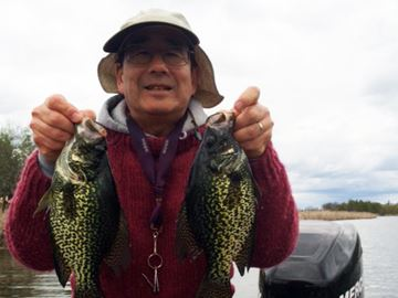 Fishing for black crappie a holland river shell game for Crappie fishing game