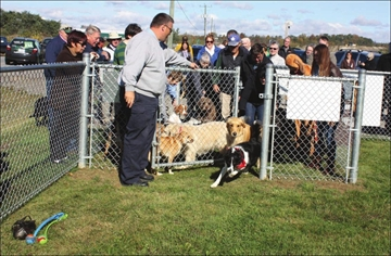 Joy abounds as off-leash park for dogs opens– Image 1