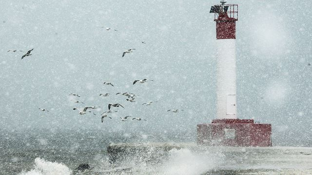Snow squall warning for Halton as driving conditions deteriorate