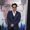 Johnny Depp 'respects' Leonardo DiCaprio-Image1
