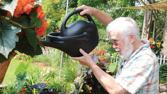 Your life summer gardening water and fertilize containers - Summer time gardening tips ...