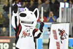 IceDogs on fire