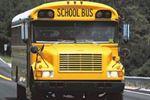 School bus, car collide in Holland Landing