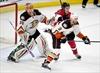 Hoffman leads Senators in win over Ducks-Image1