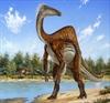 Odd dinosaur