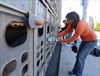 Farmer tells 'pig trial' he was worried about animals-Image1