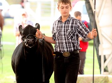 Shannonville World's Fair
