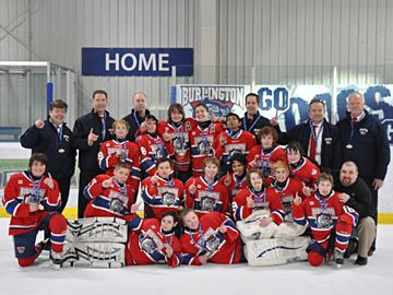 Burlington Bulldogs, Teams, Major
