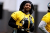 Healthy again, smaller Dupree hoping to 'ball' for Steelers-Image1