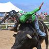 Cedar Run Rodeo