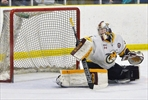 Alliston Hornets unable to finish Patriots in game four