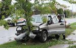 SUV into tree
