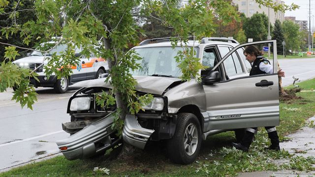 SUV into tree