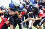 Minor football Week 8