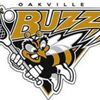 Oakville Buzz top Gaels in deciding game of East semifinal