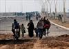 Not even Iraqis know Iraq's future: Anderson-Image1